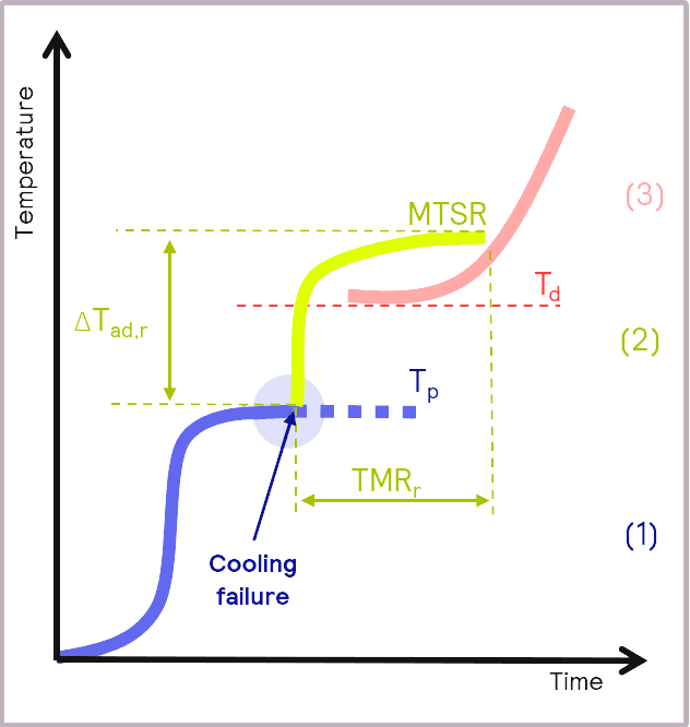 Key parameters to determine for assessing the criticality of a reaction