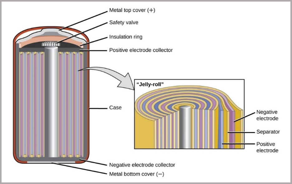 Figure 3_ anatomy of a cylindrical cell